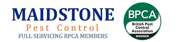 Maidstone Pest Control